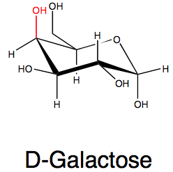 Information on D...D Galactose Structure